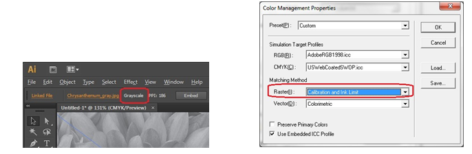 And Ink Limit For Raster In VersaWorks Color Management Properties When Printing This Will Prompt To Print The Image With Black Only