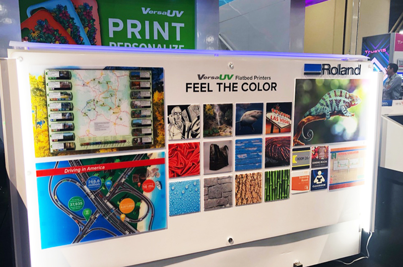 Feel the color wall roland dga UV print