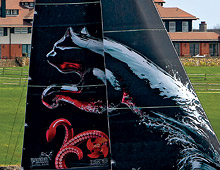puma sailboat wrap